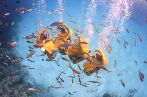 SUB Bahamas experience in Nassau Paradise Island