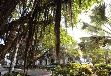 Bahamas Outdoors