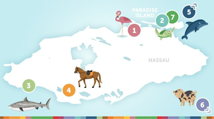 Animal Lover's Map of Nassau Paradise Island